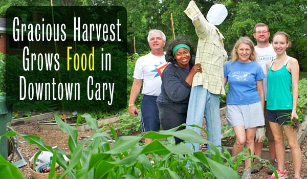 gracious harvest