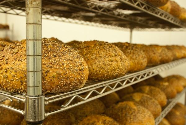 wellspring-bakery-0065